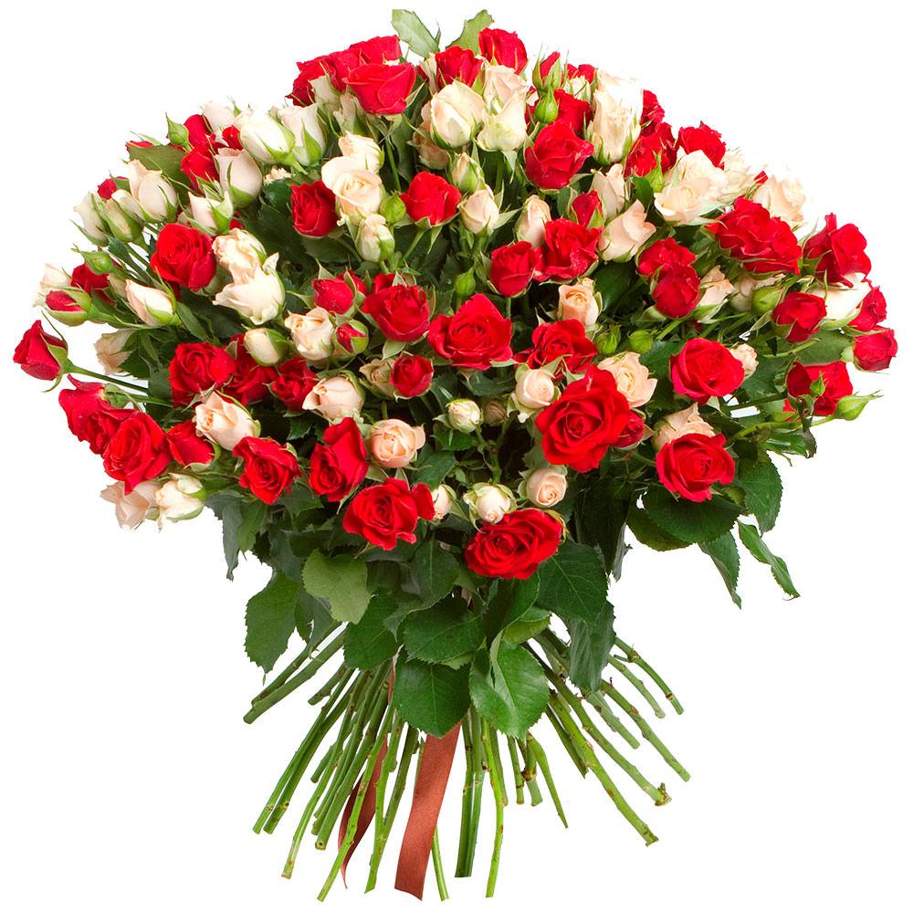 Открытка с днем рождения большие букеты роз
